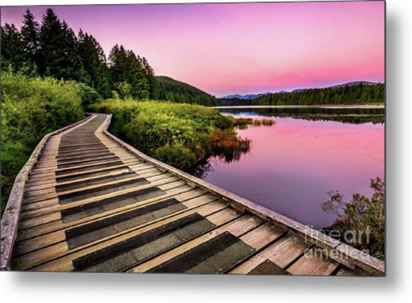 Path By The Lake Metal Print