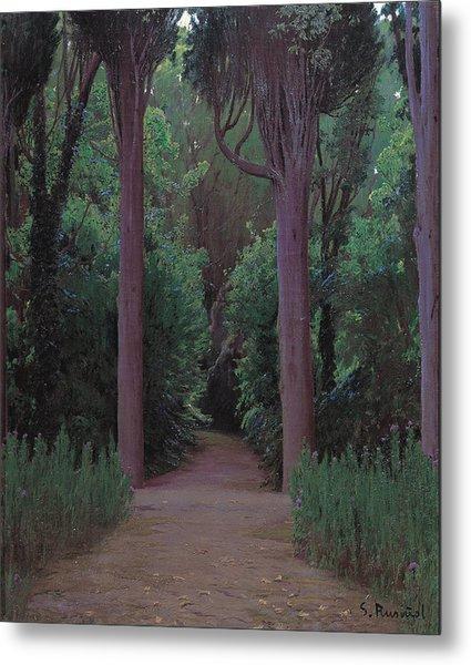 Path In A Park   Metal Print