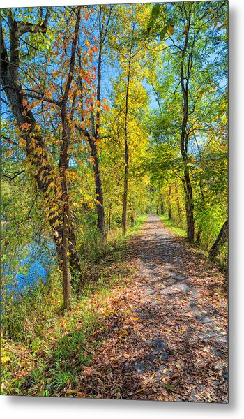 Path Through Fall Metal Print