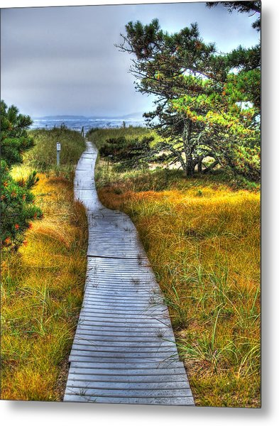 Path To Bliss Metal Print