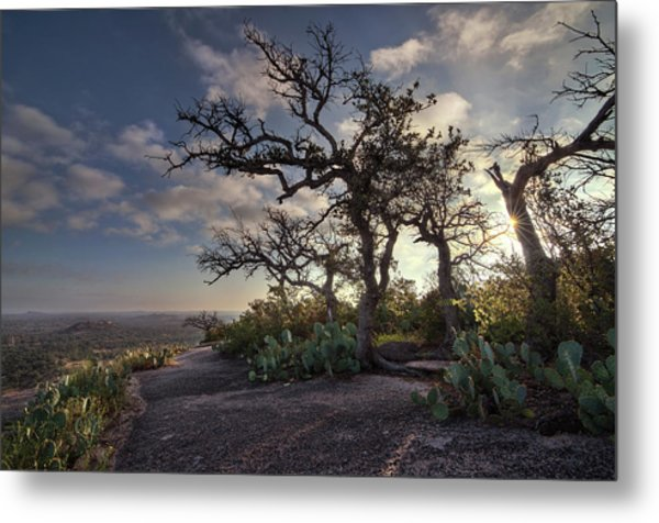 Metal Print featuring the photograph Pathway On Top Of Enchanted Rock by Todd Aaron