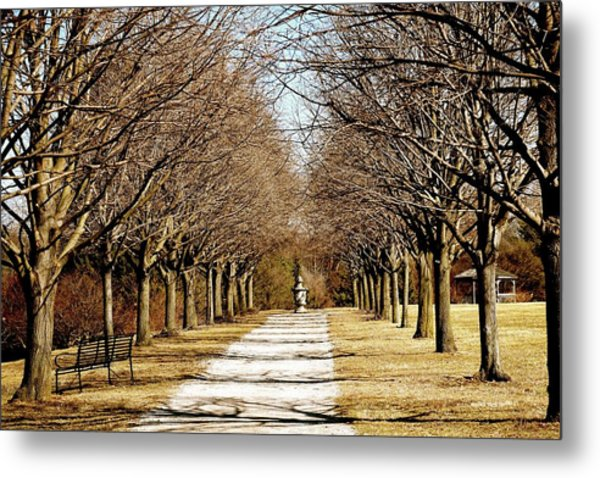 Pathway Through Trees Metal Print