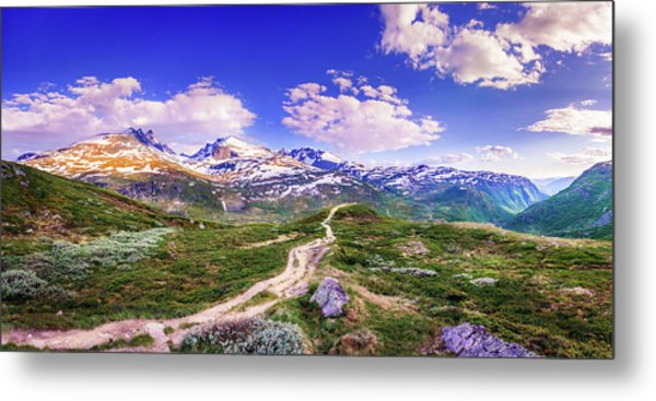 Pathway To A Valley Metal Print