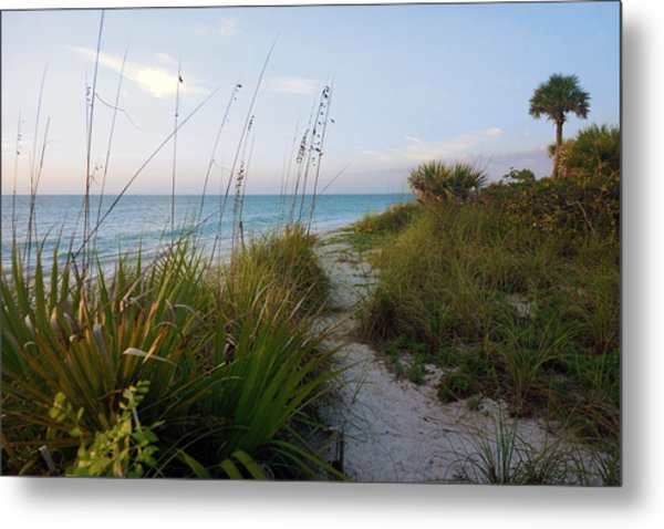 Pathway To Barefoot Beach  In Naples Metal Print