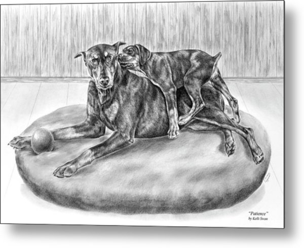 Patience - Doberman Pinscher And Puppy Print Metal Print