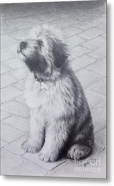 Patsy's Puppy Metal Print