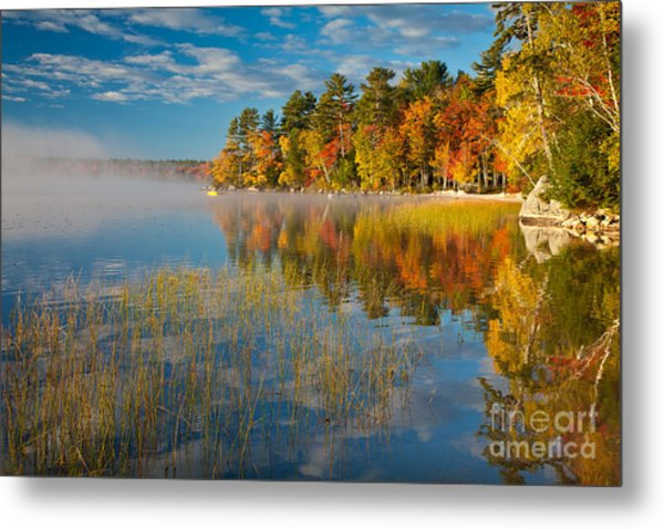 Patten Pond Metal Print