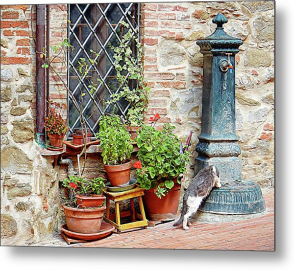 Pawse For A Drink In Paciano Metal Print