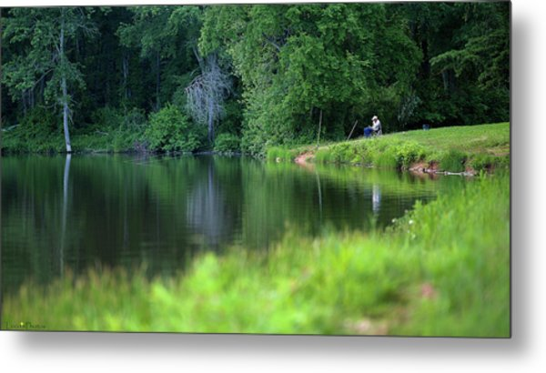 Metal Print featuring the photograph Peace by Lori Coleman