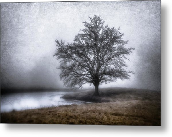 Peaceful Country Setting Metal Print