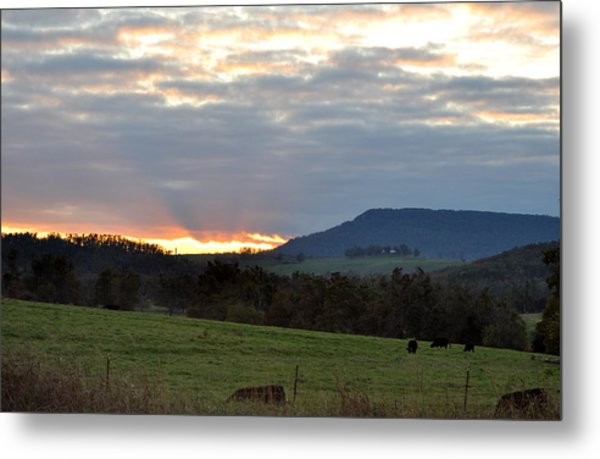Peaceful Evening Metal Print by Jan Amiss Photography