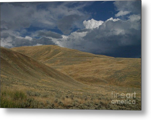 Peaceful Intensity Metal Print by Katie LaSalle-Lowery