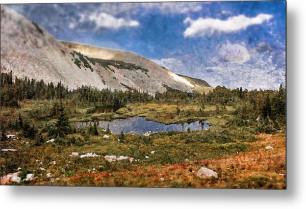 Peaceful Meadow  Metal Print by Garett Gabriel