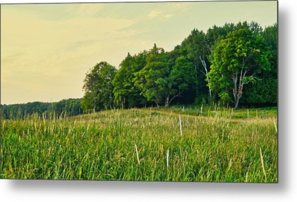 Peaceful Pastures Metal Print