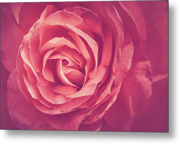Blooms And Petals Metal Print