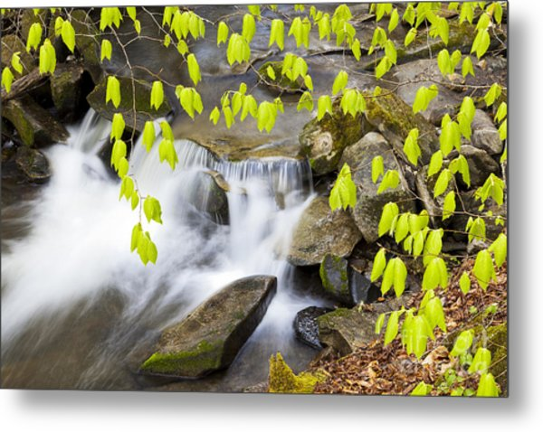 Peacham Brook Spring Metal Print