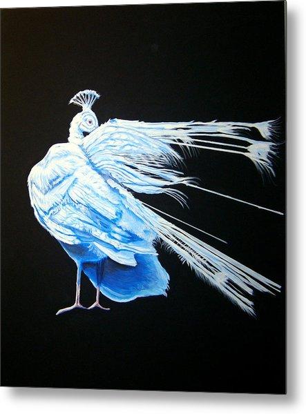 Peacock 2 Metal Print by Chris Benice
