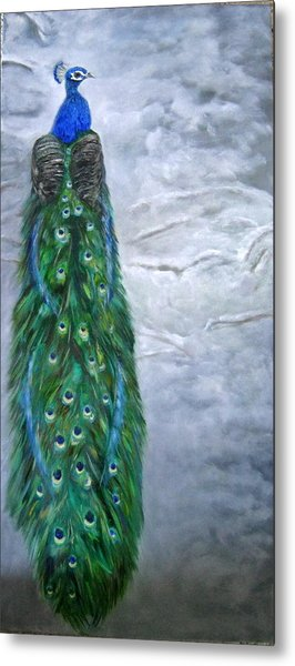 Peacock In Winter Metal Print