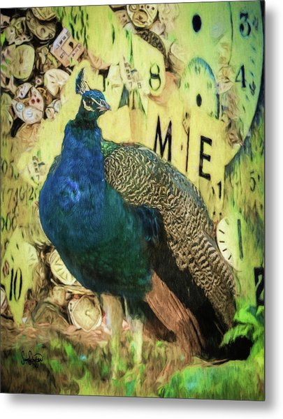 Peacock Time Metal Print