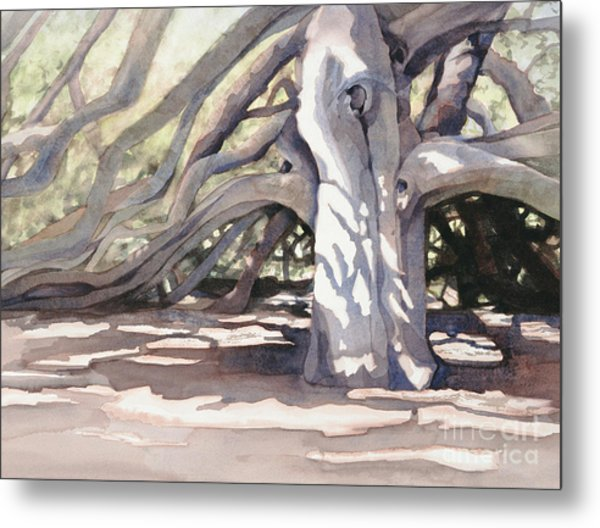 Pechanga Great Oak Metal Print