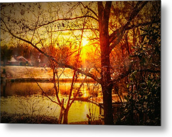 Peeking Through - Lake Sunrise Metal Print by Barry Jones
