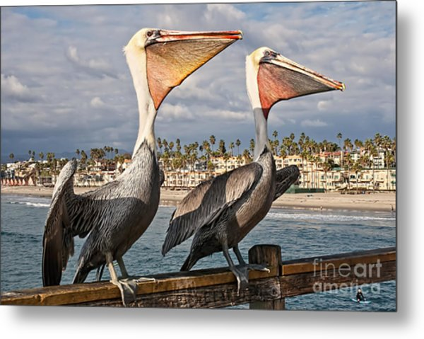 Pelican - A Happy Landing Metal Print