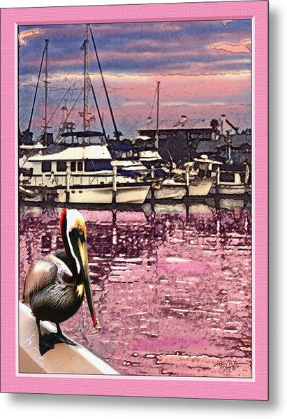 Pelican At Sunset 1 Metal Print by John Breen
