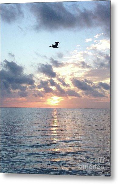 Pelican Dawn Metal Print
