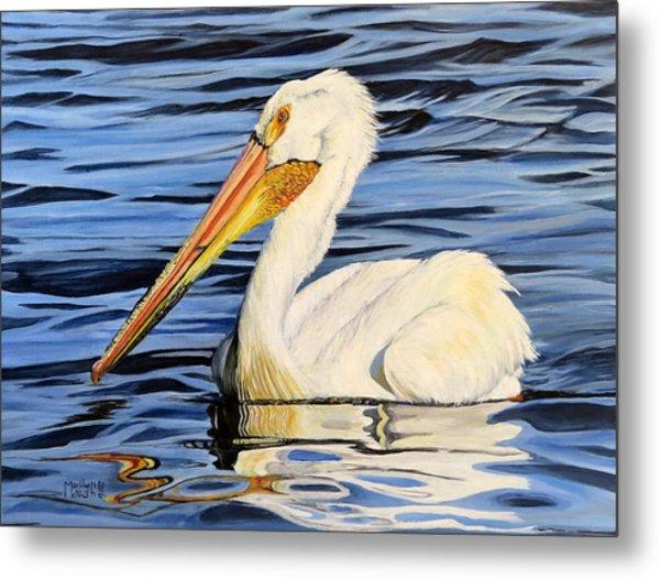 Pelican Posing Metal Print