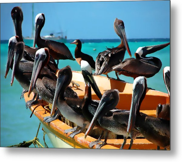 Pelicans On A Boat Metal Print