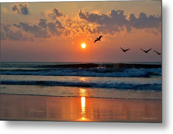 Pelicans On The Move Metal Print