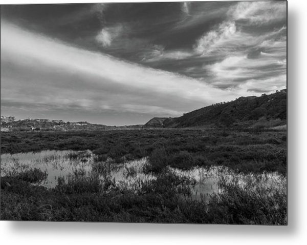 Penasquitos Creek Marsh Metal Print