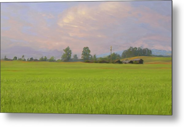 Penngrove Field Metal Print by Thomas  Hansen