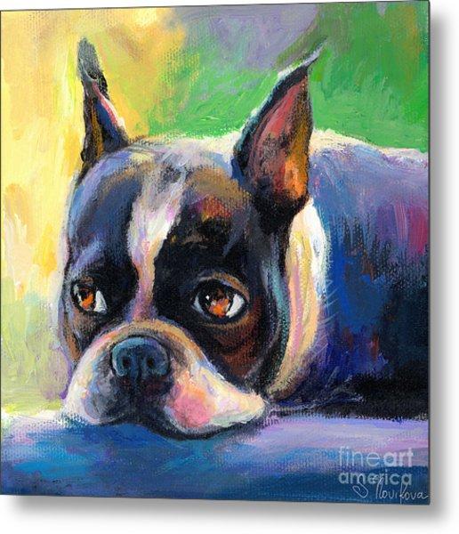 Pensive Boston Terrier Dog Painting Metal Print