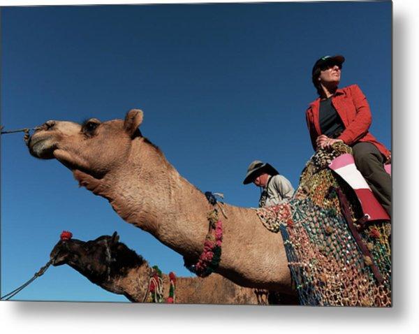 People On The Camel, Pushkar Metal Print
