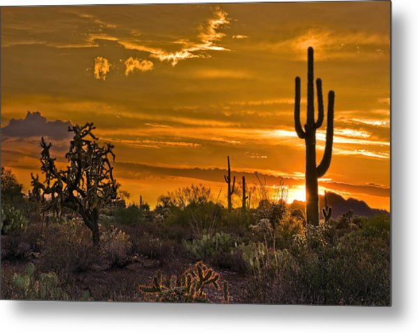 Peralta Arizona Sunset Metal Print