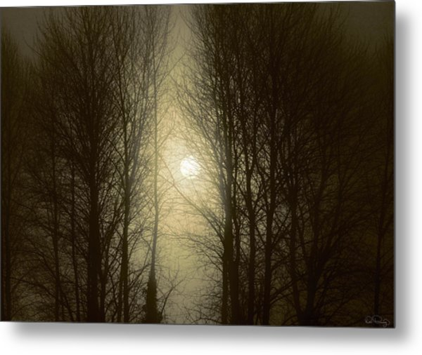 Perception Metal Print