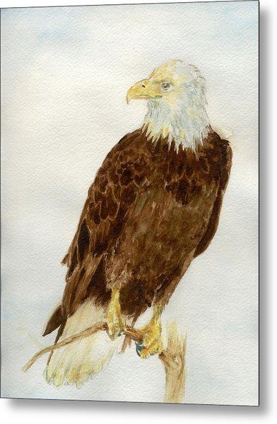 Perched Eagle Metal Print