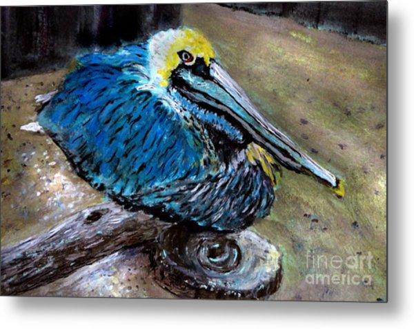 Perky Pelican Metal Print