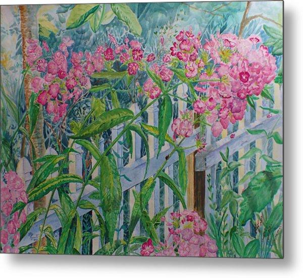 Perky Pink Phlox In A Dahlonega Garden Metal Print