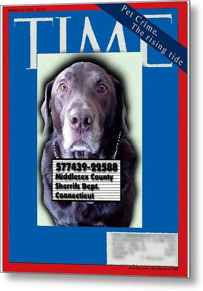 Pet Crime Metal Print
