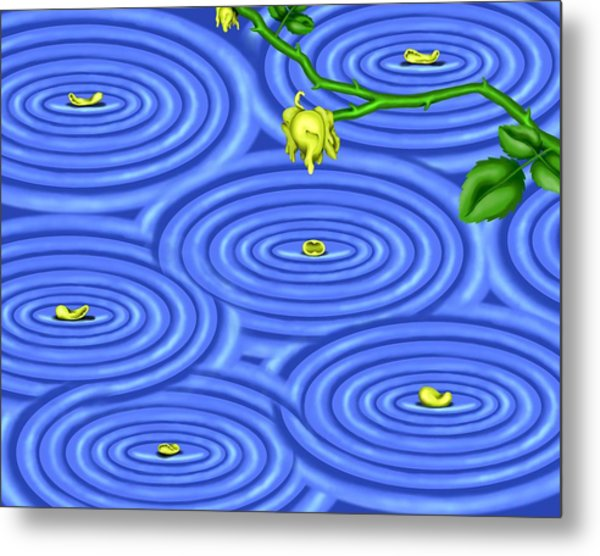 Petals On Water IIi Metal Print