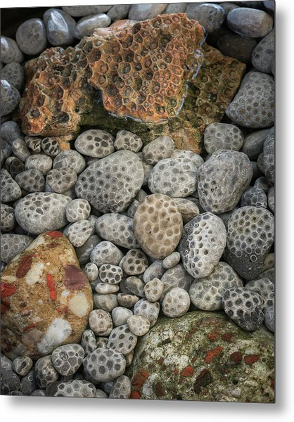Petoskey And Pudding Stones Metal Print