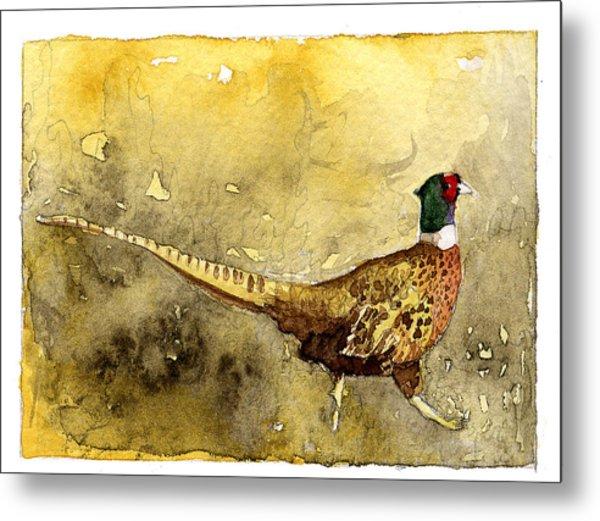 Pheasant Metal Print by Eunice Olson