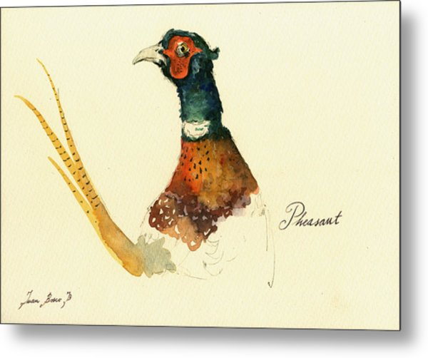Pheasant Painting Metal Print
