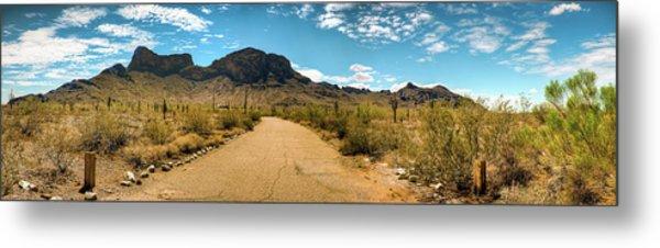 Picacho Peak State Park Panorama Metal Print