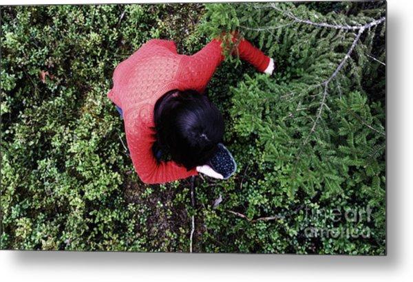 Picking Berries In The Woods Metal Print