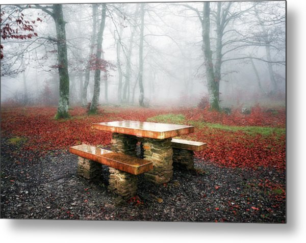 Picnic Of Fog Metal Print