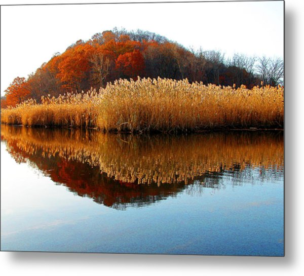 Piermont Backwater Metal Print