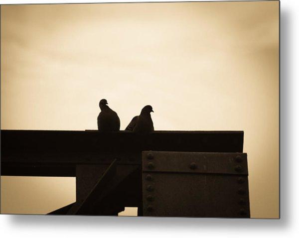 Pigeon And Steel Metal Print